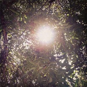 Foto bidikan Teh Dey (http://www.deyfikri.com/)
