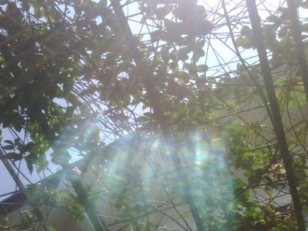 Sinar matahari memasuki celah di tempat pembuatan kain sutra
